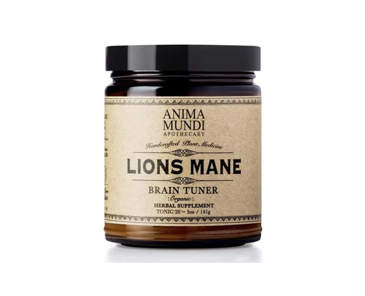 leones melena sintonizador de cerebro anima mundi