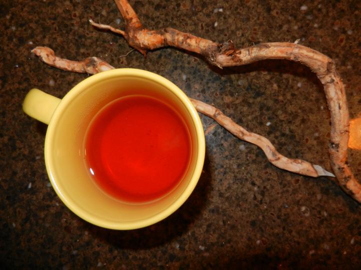 Beneficios para la salud del té de sasafrás