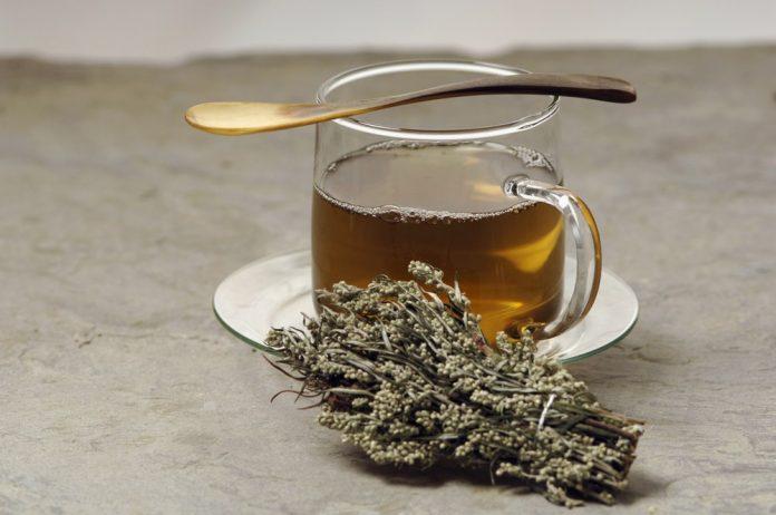 Beneficios para la salud del té de artemisa