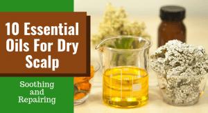 10 aceites esenciales para cuero cabelludo seco (calmantes y reparadores)