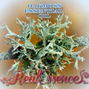 Beneficios para la salud del aceite esencial de musgo de roble