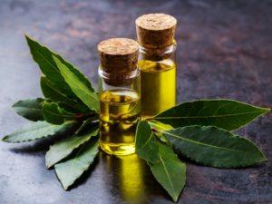beneficios para la salud del aceite esencial de bahía
