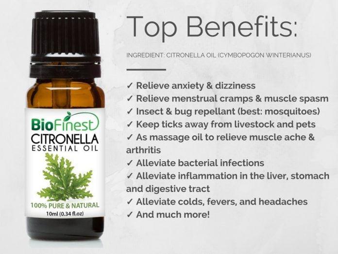 usos y beneficios del aceite esencial de citronela
