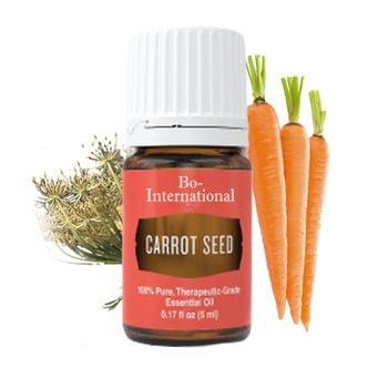 beneficios para la salud del aceite esencial de semilla de zanahoria