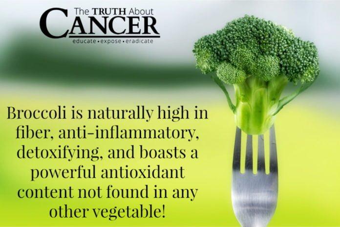 El brócoli previene el cáncer de próstata, estómago, mama y colon