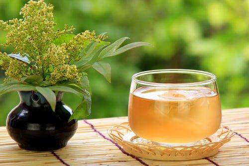 Beneficios para la salud de los tés de cebada