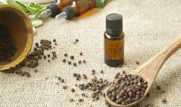 cómo hacer aceite esencial de pimienta negra