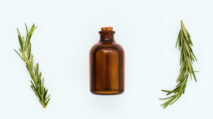 champú de aceite esencial de romero