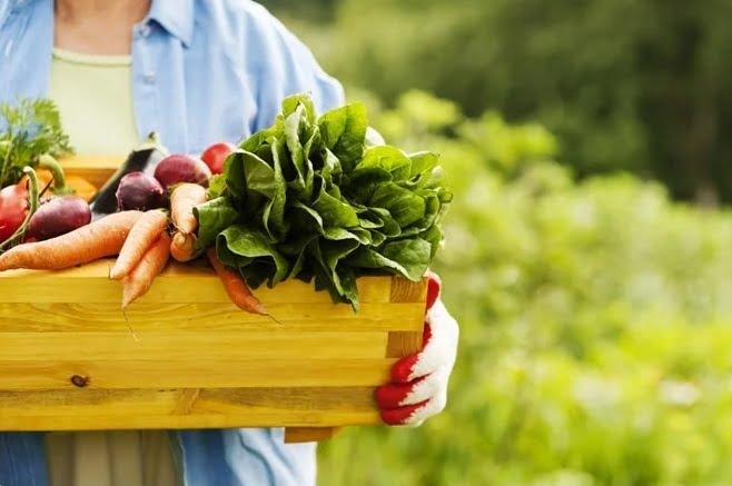 usos de alimentos orgánicos para la salud