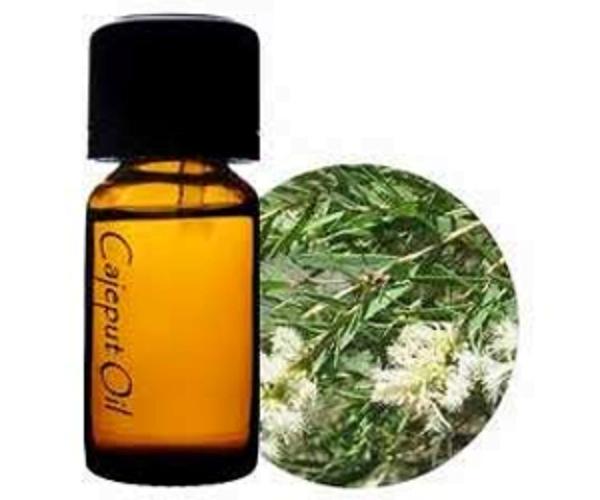 olor a aceite esencial de cajuput
