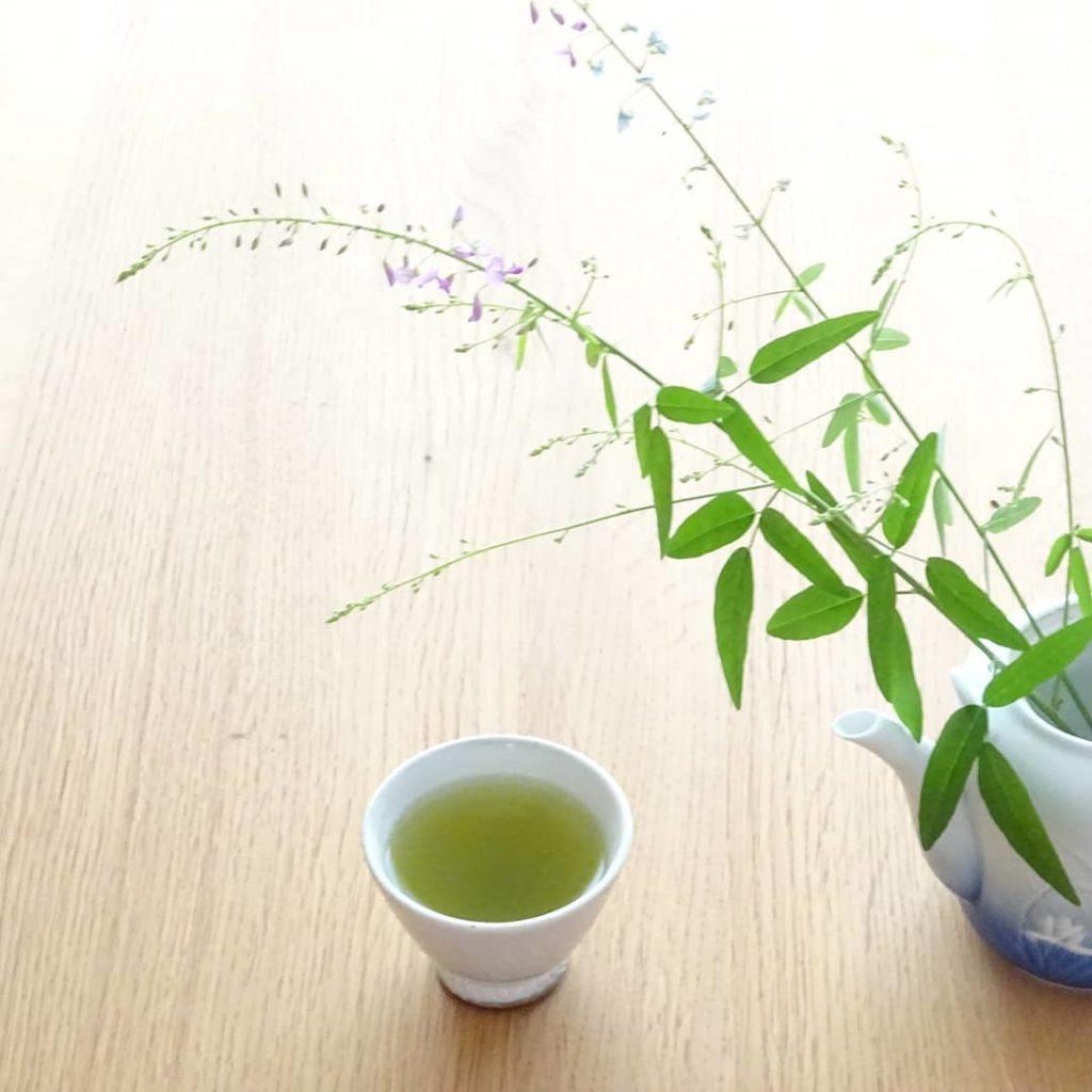 Beneficios para la salud del té sencha