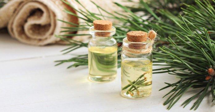 Aceite de pino: 7 hechos asombrosos