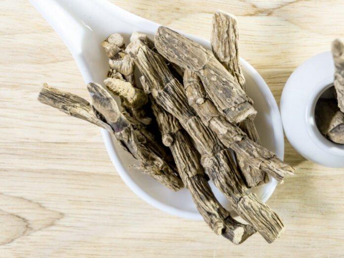 Beneficios para la salud del aceite esencial de cálamo