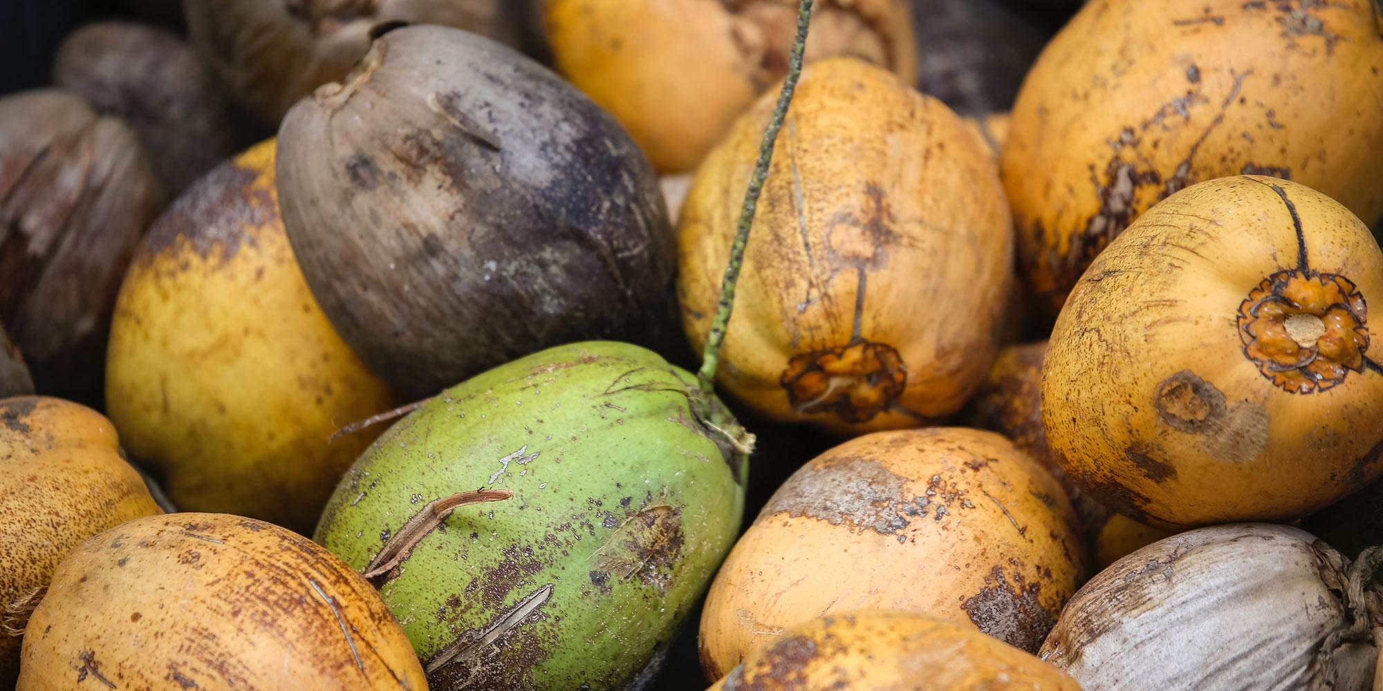 Entonces ... ¿El aceite de coco es malo para ti ahora?