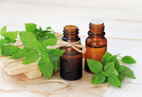 Aceite de tulsi: los 10 mejores beneficios para la salud