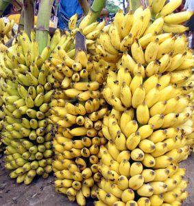 anemia, plátano