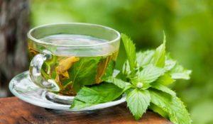 Beneficios para la salud del té verde, cáncer de huesos